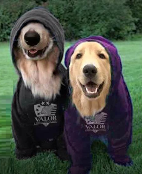valor hoodies
